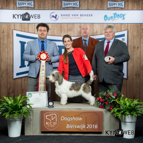 Best in Show (BIS) - BIS IDS Bleiswijk (Netherlands), Saturday, 5 November 2016 (photo)