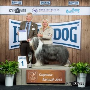 FCI Group I - BIS IDS Bleiswijk (Netherlands), Saturday, 5 November 2016 (photo)