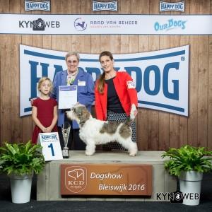 FCI Group VI - BIS IDS Bleiswijk (Netherlands), Saturday, 5 November 2016 (photo)