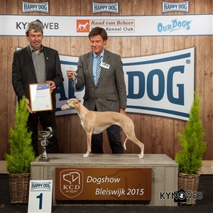 FCI group X - Winners of the International Dog Show in Bleiswijk (Netherlands), Saturday, 7 November 2015 (BIS photo)