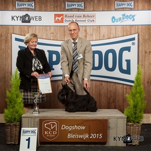 FCI group III - Winners of the International Dog Show in Bleiswijk (Netherlands), Saturday, 7 November 2015 (BIS photo)