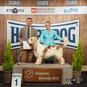 FCI group VI - Winners of the International Dog Show in Bleiswijk (Netherlands), Saturday, 7 November 2015 (BIS photo)