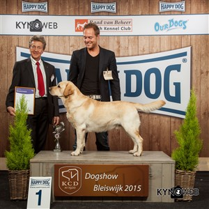 FCI group VIII - Winners of the International Dog Show in Bleiswijk (Netherlands), Saturday, 7 November 2015 (BIS photo)