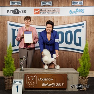 FCI group IX - Winners of the International Dog Show in Bleiswijk (Netherlands), Saturday, 7 November 2015 (BIS photo)