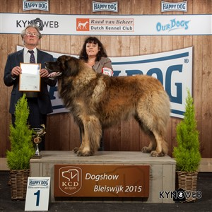 FCI group II - Winners of the International Dog Show in Bleiswijk (Netherlands), Sunday, 8 November 2015 (BIS photo)