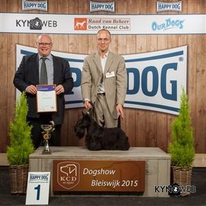 Группа FCI III - Победители Международной выставки собак в Блейсвике (Нидерланды), воскресенье, 8 ноября 2015 (BIS фото)