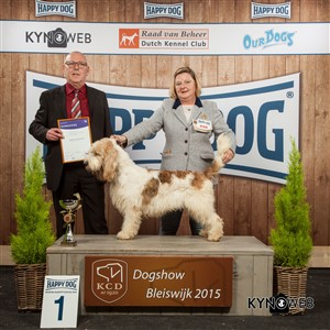FCI group VI - Winners of the International Dog Show in Bleiswijk (Netherlands), Sunday, 8 November 2015 (BIS photo)