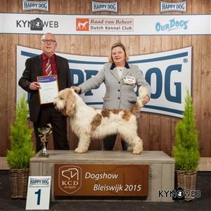 Группа FCI VI - Победители Международной выставки собак в Блейсвике (Нидерланды), воскресенье, 8 ноября 2015 (BIS фото)