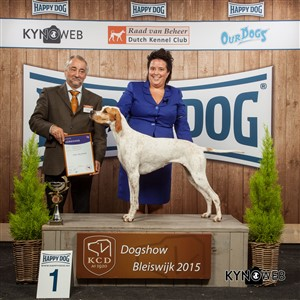 FCI group VII - Winners of the International Dog Show in Bleiswijk (Netherlands), Sunday, 8 November 2015 (BIS photo)