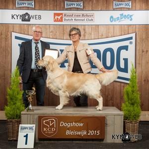 Группа FCI VIII - Победители Международной выставки собак в Блейсвике (Нидерланды), воскресенье, 8 ноября 2015 (BIS фото)