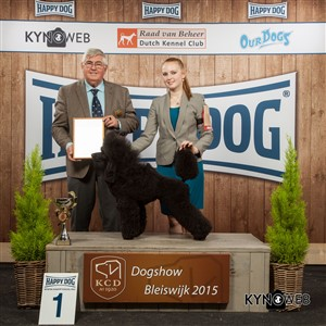 FCI group IX - Winners of the International Dog Show in Bleiswijk (Netherlands), Sunday, 8 November 2015 (BIS photo)