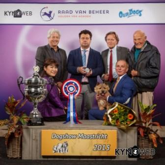 Best in Show (BIS) - Winners of the International Dog Show in Maastricht (Netherlands), Sunday, 27 September 2015