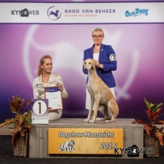 Группа FCI X - Победители Международной выставки собак в Маастрихте (Нидерланды), воскресенье, 27 сентября 2015