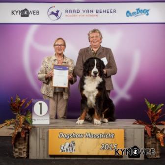 Группа FCI II - Победители Международной выставки собак в Маастрихте (Нидерланды), воскресенье, 27 сентября 2015
