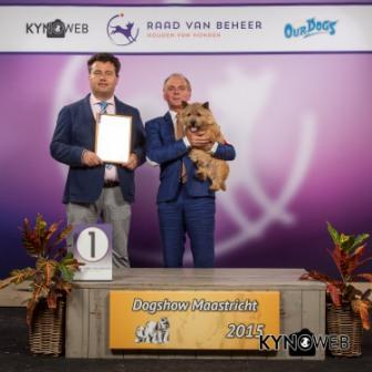 Группа FCI III - Победители Международной выставки собак в Маастрихте (Нидерланды), воскресенье, 27 сентября 2015