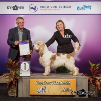 Группа FCI VI - Победители Международной выставки собак в Маастрихте (Нидерланды), воскресенье, 27 сентября 2015
