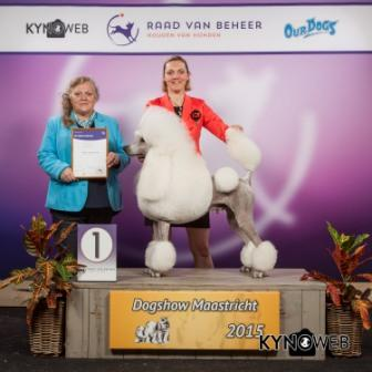 FCI group IX - Winners of the International Dog Show in Maastricht (Netherlands), Sunday, 27 September 2015