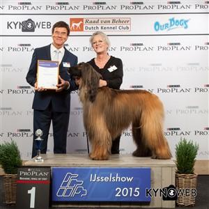Группа FCI X - Победители Международной выставки собак в Зволле (Нидерланды), суббота, 3 октября 2015
