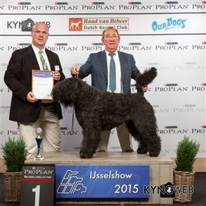 Группа FCI I - Победители Международной выставки собак в Зволле (Нидерланды), суббота, 3 октября 2015