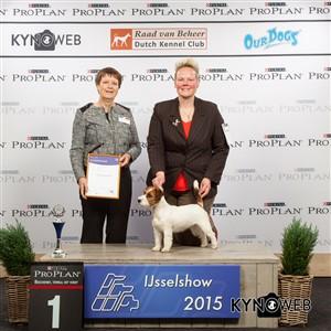 Группа FCI III - Победители Международной выставки собак в Зволле (Нидерланды), суббота, 3 октября 2015