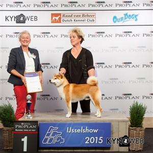 Группа FCI V - Победители Международной выставки собак в Зволле (Нидерланды), суббота, 3 октября 2015