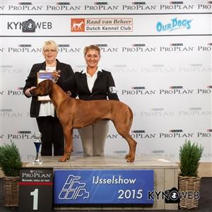 Группа FCI VI - Победители Международной выставки собак в Зволле (Нидерланды), суббота, 3 октября 2015