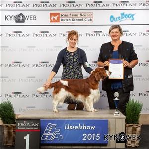 Группа FCI VIII - Победители Международной выставки собак в Зволле (Нидерланды), суббота, 3 октября 2015