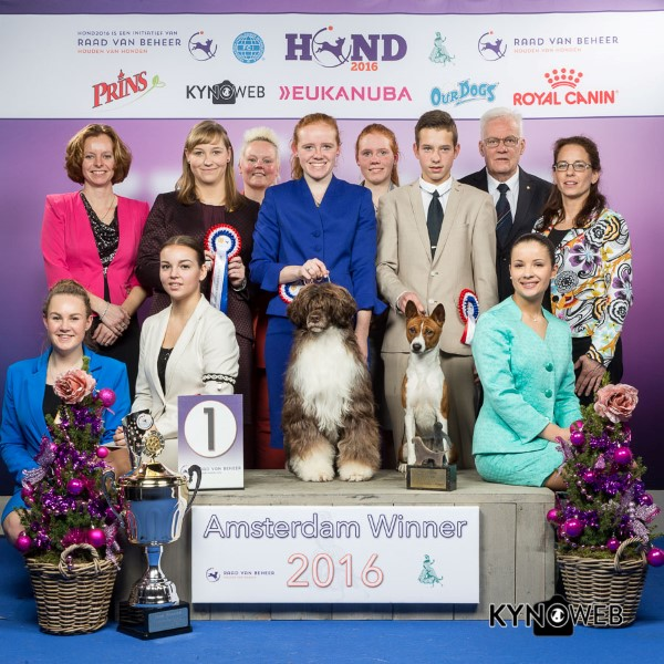 Best Junior Handler - BIS IDS «Amsterdam Winner Show 2016» (The Netherlands), 10-11 December 2016 (BIS Photos)